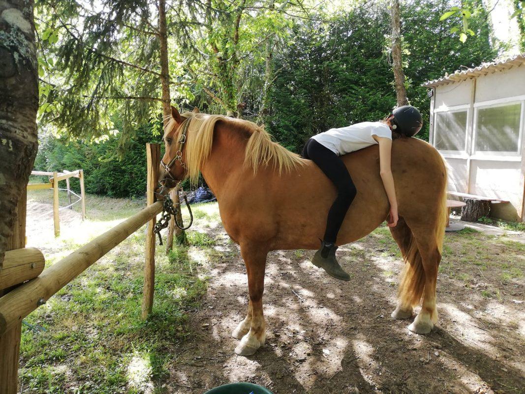 therapie par le cheval 86